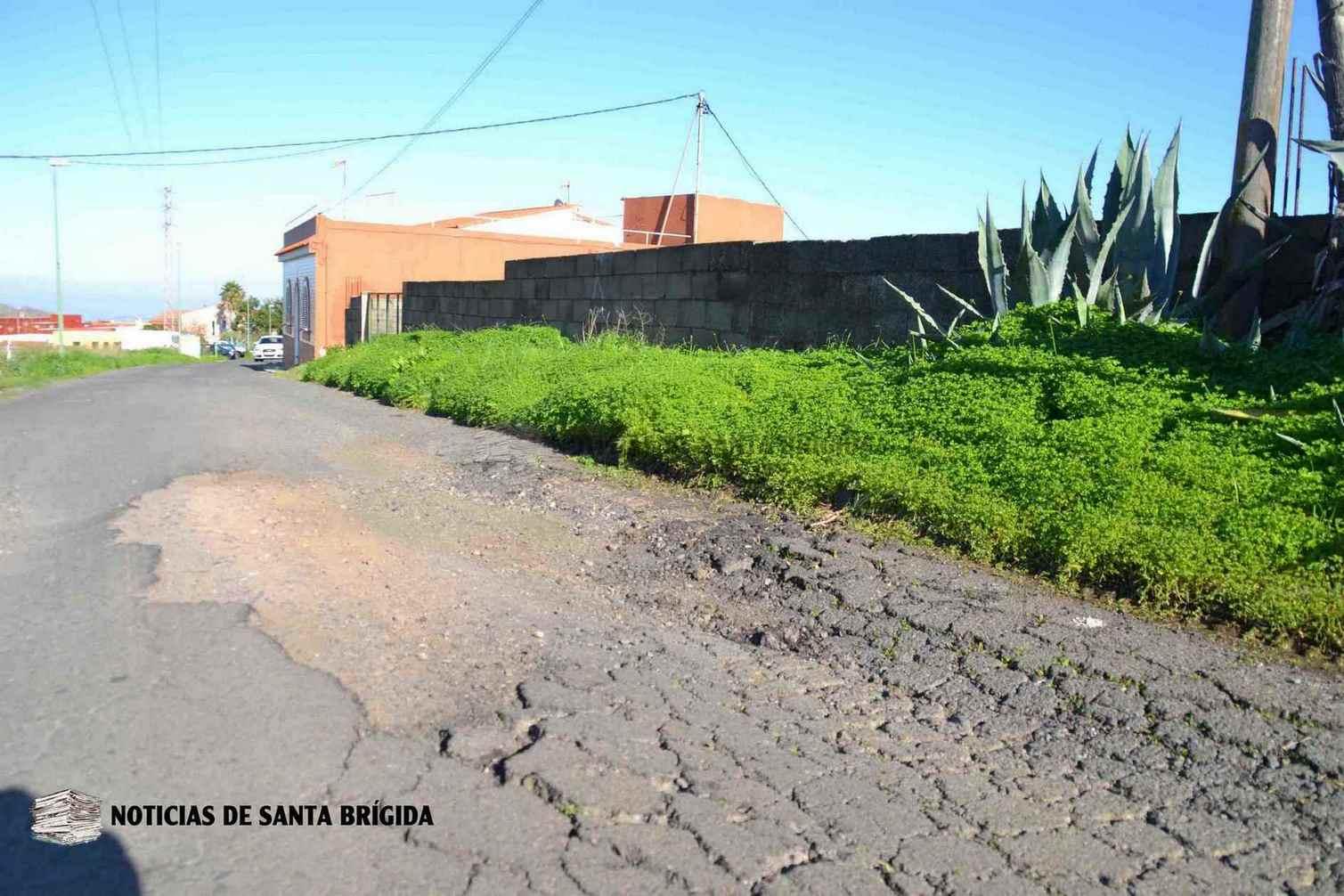 carretera El Piquillo Llanos de Maria Rivera – Santa Brigida – Noticias de Santa Brígida – Laura Miranda